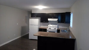 Fully renovated 2 bed 1.5 bath main floor suite in Queensborough