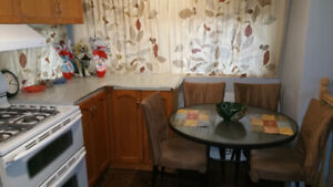 Dining room / Kitchen Chairs