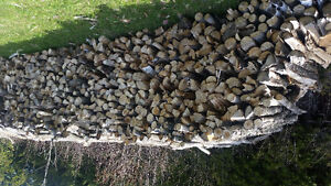 Firewood for sale 4ft length