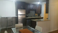 Spacious Furnished Condo Steps away from Chinook Mall