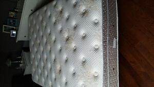 Queen DreamStar Mattress EUC