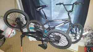 Bmx, one pro series, one teen