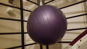 Small exercise ball