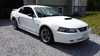 2002 Ford Mustang GT -REDUCED-
