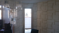 Ceiling fan, fancy lights and appliances installer