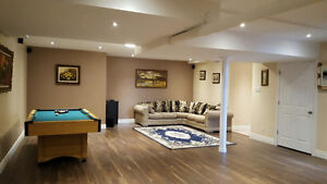 Huge basement apartment with luxurious finishings