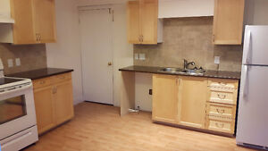 Large Downstairs Newly finished APT Lantz -2 bdrms 1 bath-$900/m