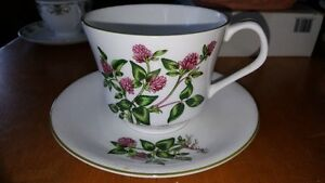 Beautiful Elizabethan bone china large cup and saucer