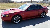 2004 FORD MUSTANG GT 4.6 CABRIOLET (CONVERTIBLE) MANUELLE *RARE*
