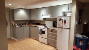 Great renovated 1 bdrm bsmt apt in historic home/5min walk to DT