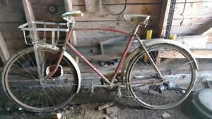 Glider Bicycle