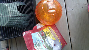 Rodent cage with toys Kitchener / Waterloo Kitchener Area image 2