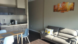 Olympic Village Vancouver 1 Bedroom Furnished Apartment Rental