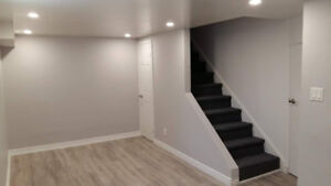 Professional Renovation: Basement, Kitchen, Bathroom And More