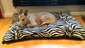 Cheap-Economy-Budget-Dog-Bed-Dog-Beds-Pet-Bed-Dogbed-Dogbeds-Petbed-Petbeds