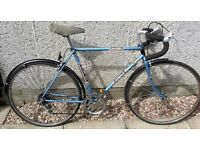 Vintage Road Bike - Raleigh Arena (20 Inch Framesize)