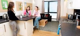 Twin room Brighton center great location clean nice flat share students welcome all bills included
