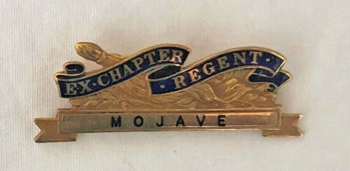 Vintage Ex-Chapter Regent DAR Daughters American Revolution Mojave Pin Bar