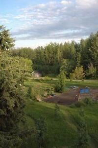 Not for wusses:Tree Farm, One Hour Outside of Edmonton, turnkey operation, including house and all equipment, website...