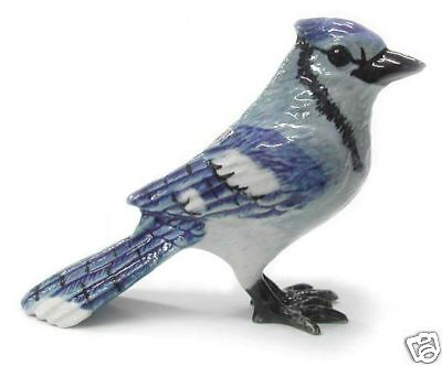 R169 Northern Rose Minature   Bluejay