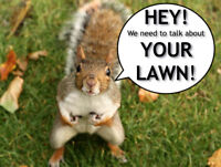 Let us take care of your lawn care needs. Call 613-893-3705