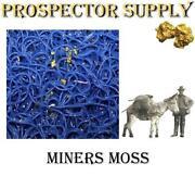 Miners Moss