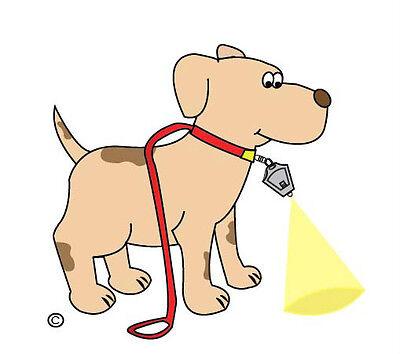 DOG WALKING LIGHT Flashlight LED Safety Super Bright Wide Beam Leash Keychain
