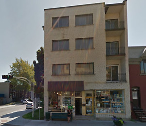 OUTREMONT - STORE SPACE