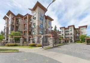 It feels good to be home! Condos in Surrey. 2 Beds, 2 Baths