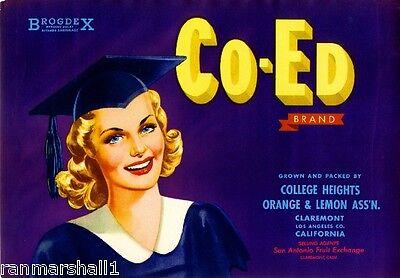 Used, Claremont College Heights Co-Ed Graduation Lemon Citrus Fruit Crate Label Print for sale  La Verne