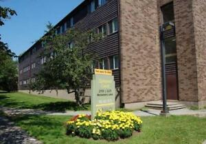Large, Updated 1 Bdrm off Quinpool! Walk to Dal/SMU, Hospitals!