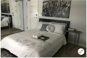 Downtown Bachelor Furnished at Pantages