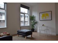 Beautiful 2 bedroom apartment to rent in Holloway