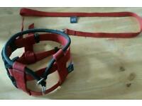 Cesar Millan Red Medium Dog Illusion Collar and Lead
