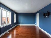 Painting & Decorating & Plastering
