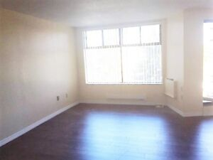 Newly renovated, large and sunny 1 bedroom