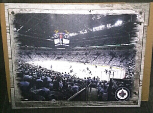 Winnipeg Jets NHL Canvas Picture 20 x 16
