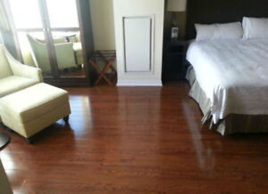 Bargain Price Downtown Furnished studio suite inclusive