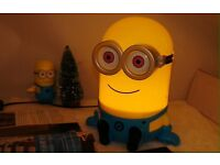 Minion colour changing light