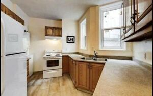 Large Room in apartment across from McGill