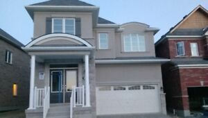 Brand new house for rent in Pickering (includes internet)