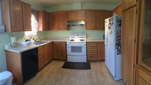 Solid Wood Kitchen Cabinets For Sale