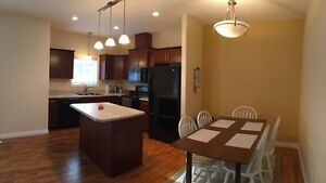 Basement Available in Evergreen