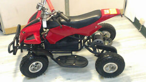 Mobility Tricycles  48 & 6o Volt Cornwall Ontario image 3
