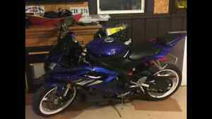 2006 Yamaha r6 in  immaculate condition