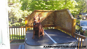 Strong Heavy Duty HoTTub Spa Cover London Ontario image 3