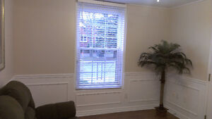 close to downtown one bedroom apartment Kingston Kingston Area image 4