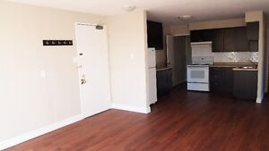 3 Bedroom Apartment Avail May in Old Ottawa South/Carleton U