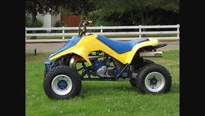 QUADRACER 250R
