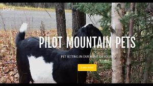 Pilot Mountain Pets-Pet Sitting in Our Home or Yours